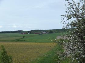 Punkalaitumen viljelymaisemaa