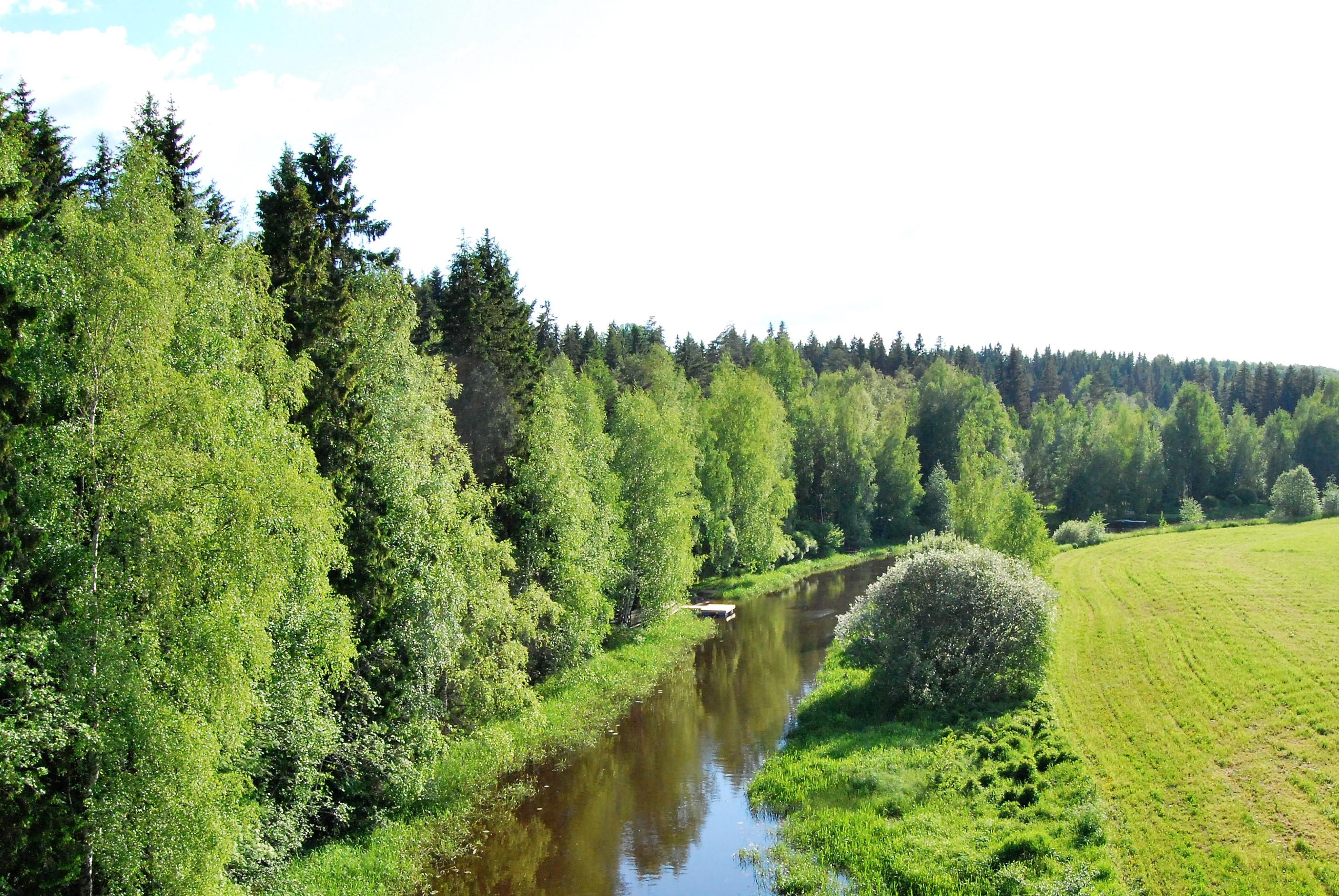Saikkalanjoki