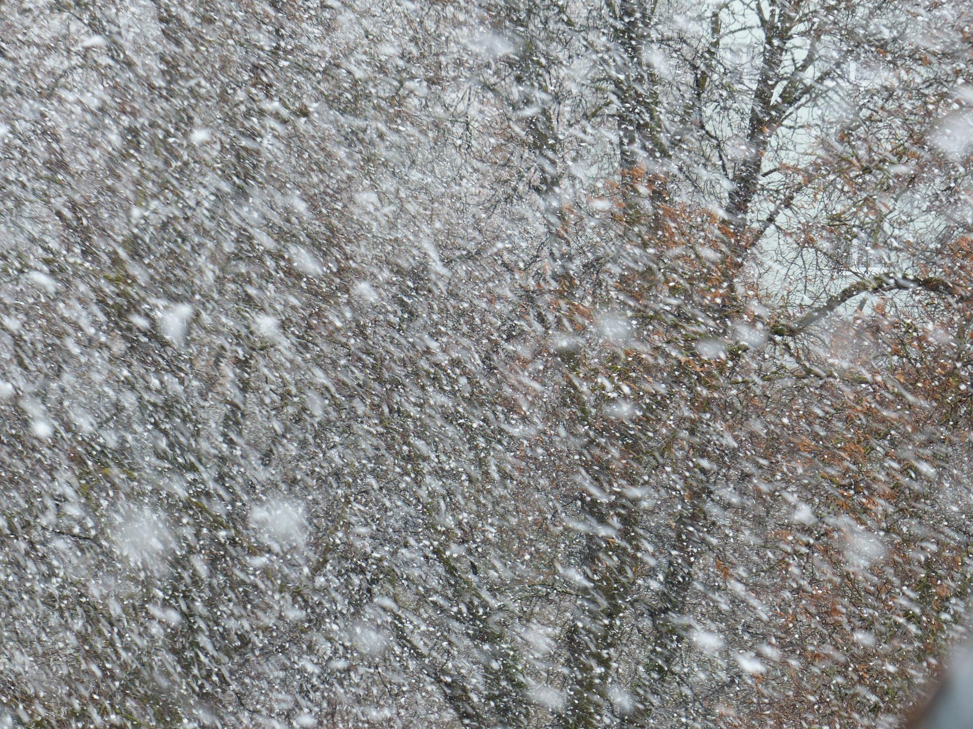 Lumisade, lumimyrsky