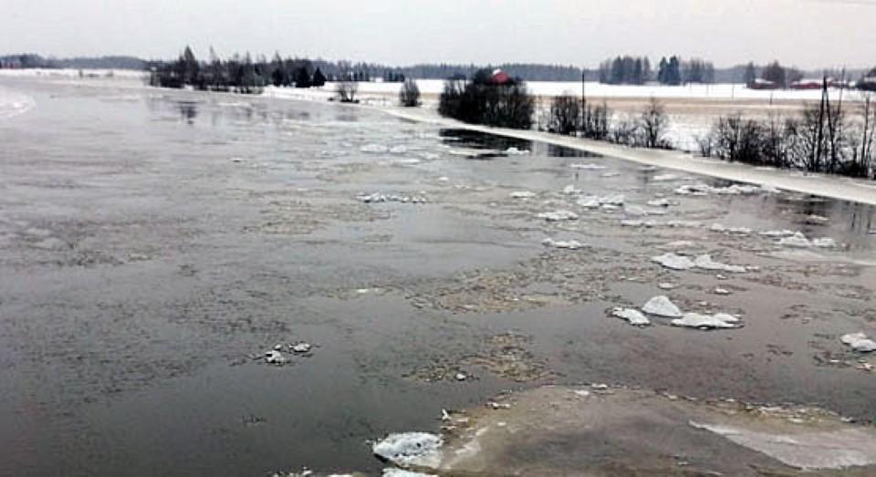 Tulvapelto Huittisissa
