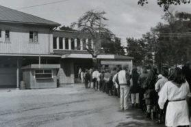 Lallis, Lallintalo