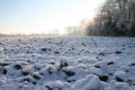 Talvi, maa, routa
