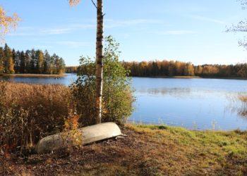 Houhajärvi, syksy