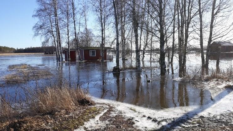 Kokemäenjoki, tulva