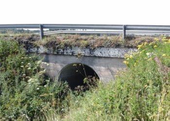 Säkylä, Puolimatkan silta
