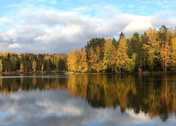Järvi, syksy
