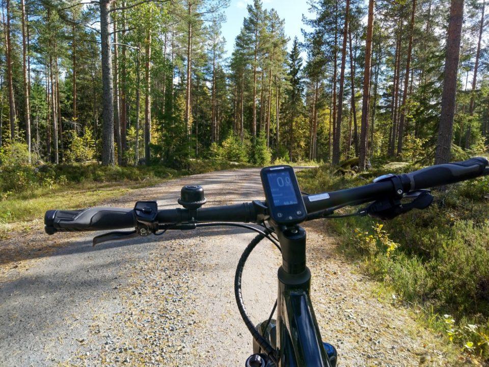 Polkupyörä, metsätie